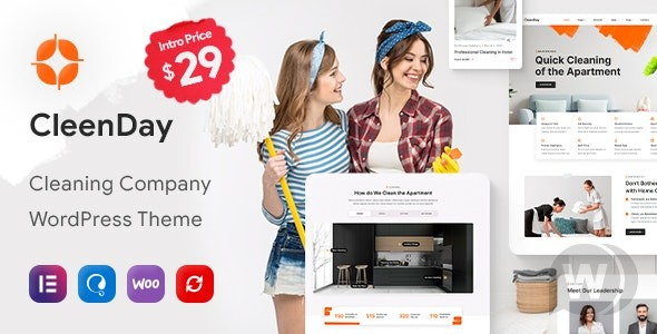 CleenDay v1. 0. 1 NULLED-WordPress theme for cleaning companies